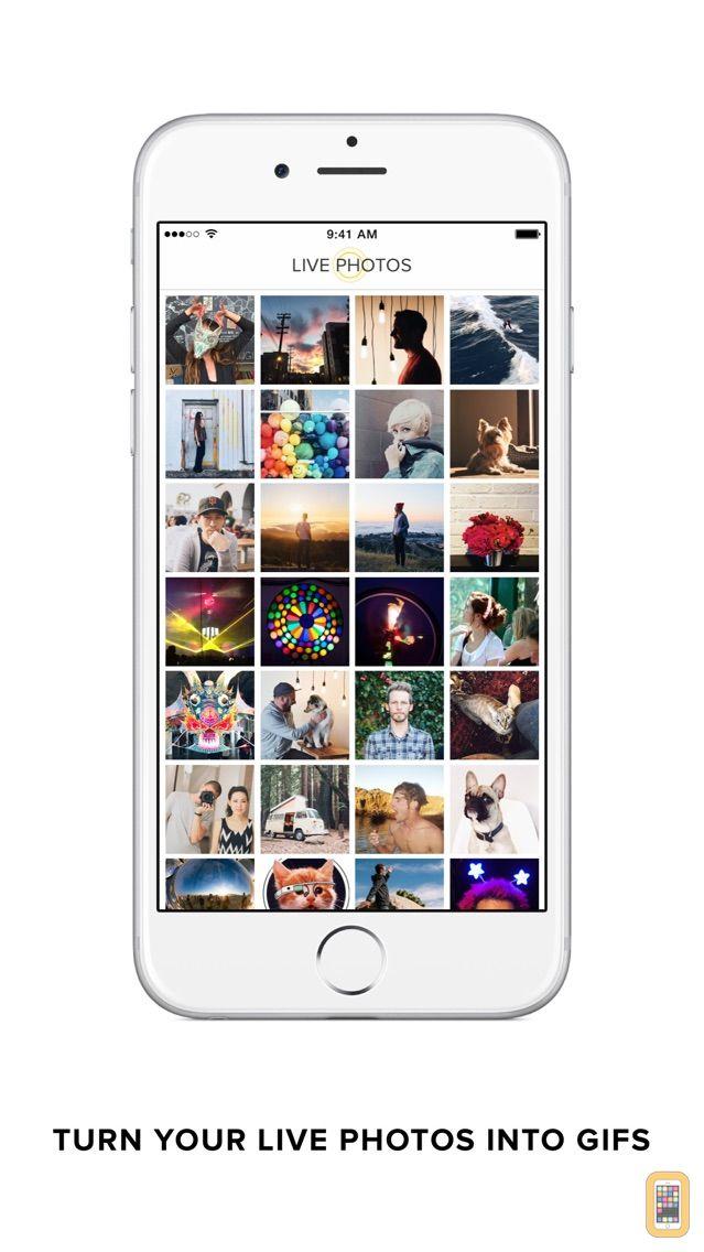 Screenshot - Live GIF