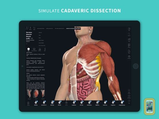 Complete Anatomy 2019 For Ipad App Info Stats Iosnoops