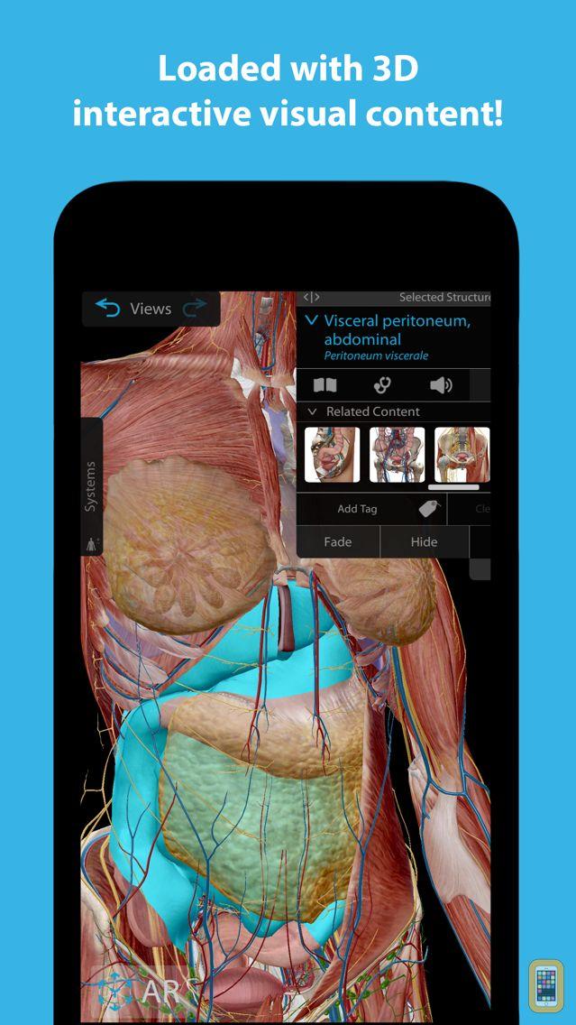 Screenshot - Human Anatomy Atlas 2018