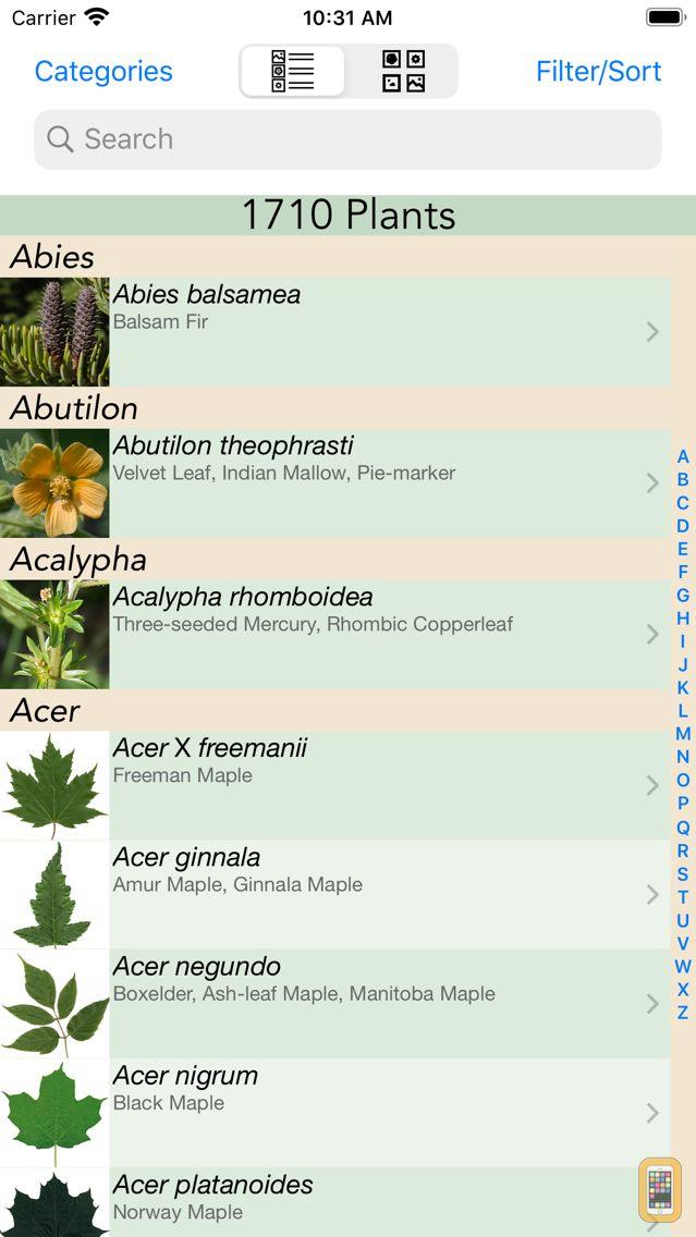 Screenshot - Minnesota Wildflowers Info.