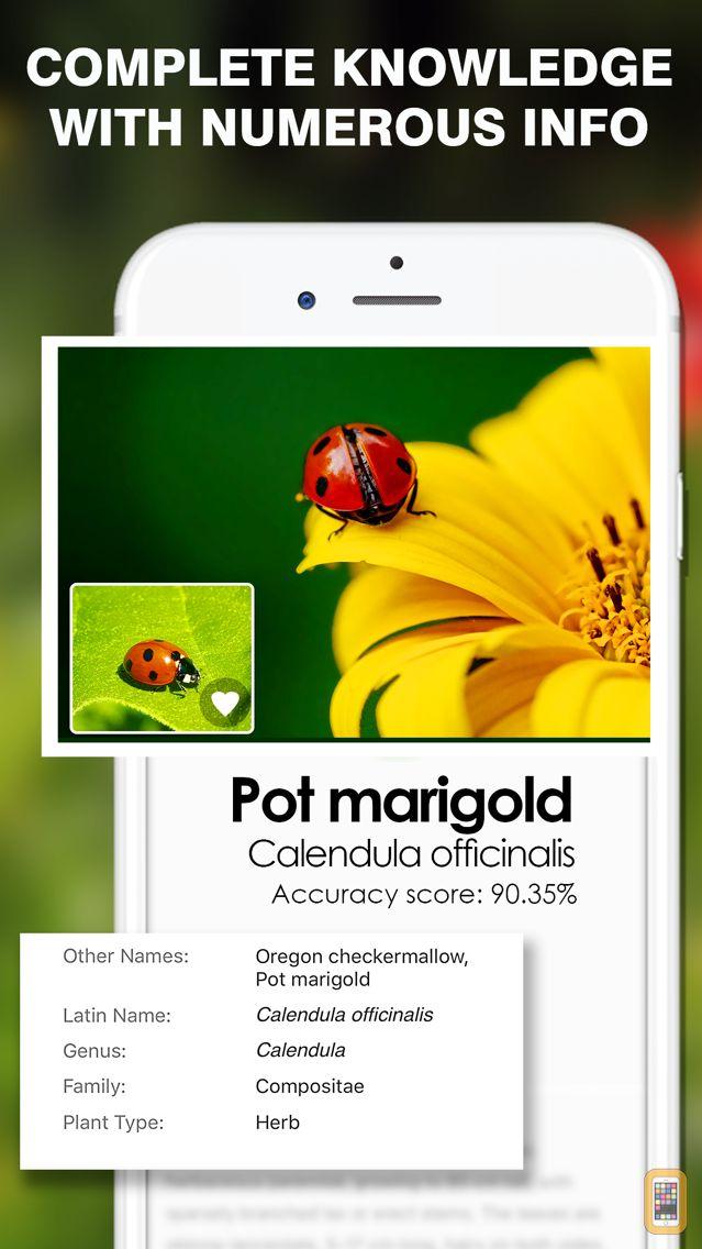 Screenshot - Smart Identifier: Plant+Insect