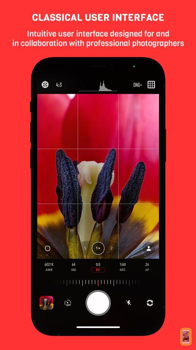 Screenshot - Chromatica camera