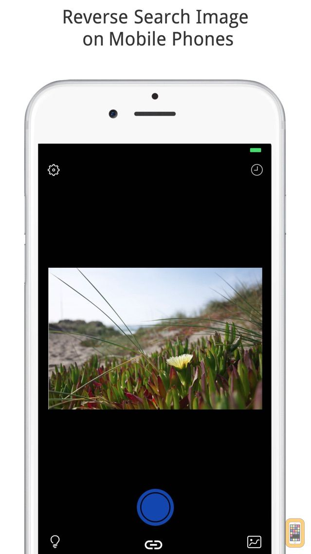 Screenshot - Reverse Image Search Tool