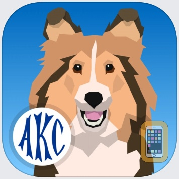 AKC Math Agility by American Kennel Club (Universal)