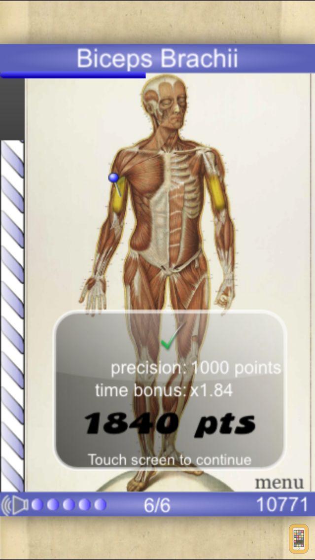 Screenshot - Speed Muscles MD
