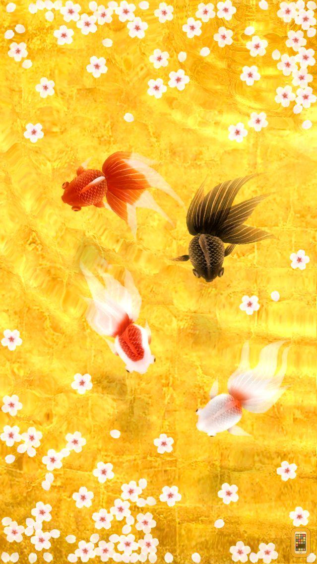 Screenshot - Wa Kingyo - Goldfish Pond