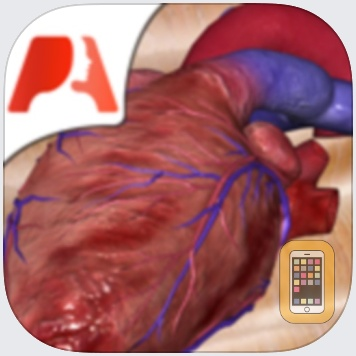 Pocket Heart by Pocket Anatomy (Universal)