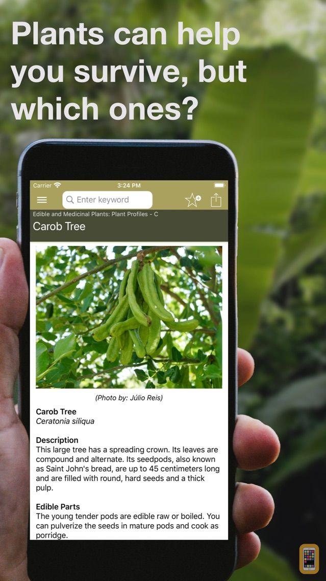Screenshot - Wild Plant Survival Guide