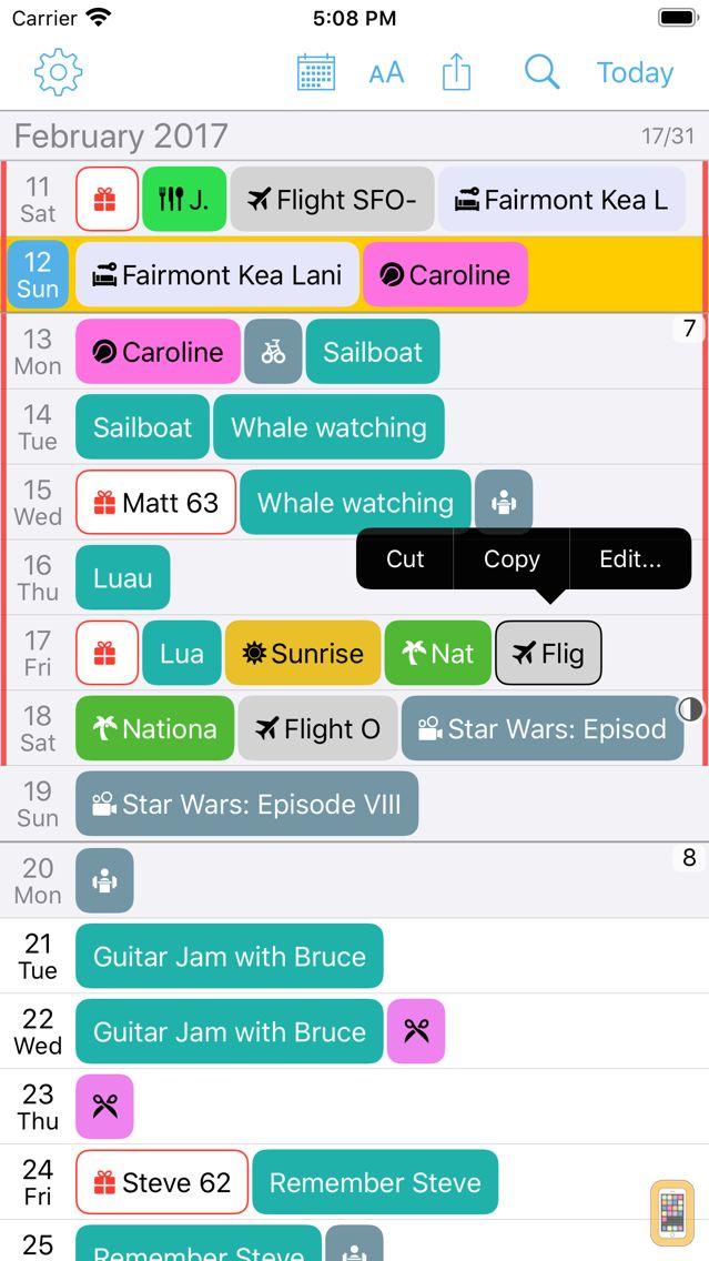 Screenshot - Month Calendar 2