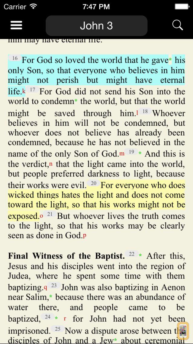 Screenshot - Catholic New American Bible RE