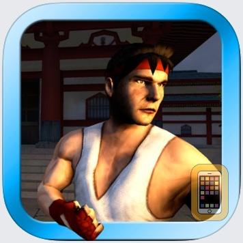 Zen Warrior by Voon (Universal)