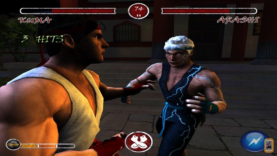 Screenshot - Zen Warrior