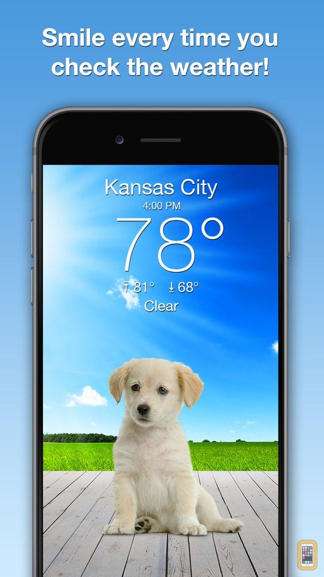 Screenshot - Weather Puppy Forecast + Radar