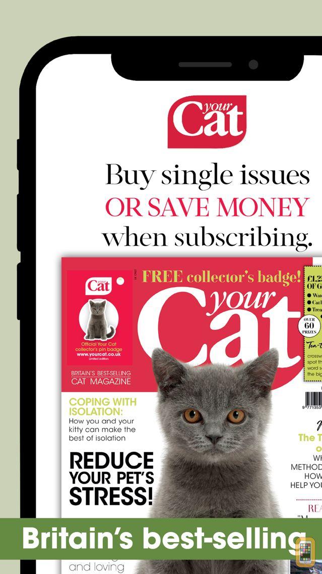 Screenshot - Your Cat – the UK's favourite cat magazine