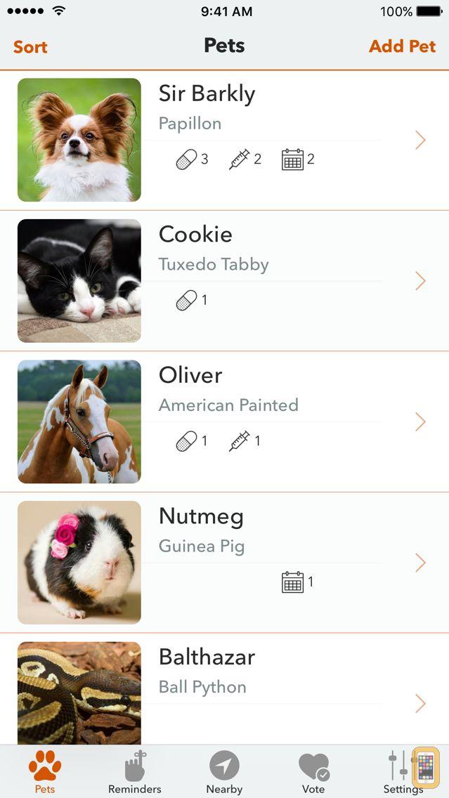 Screenshot - PetFetch