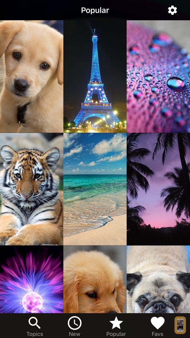 Screenshot - Wallpapers HD for iPhone!