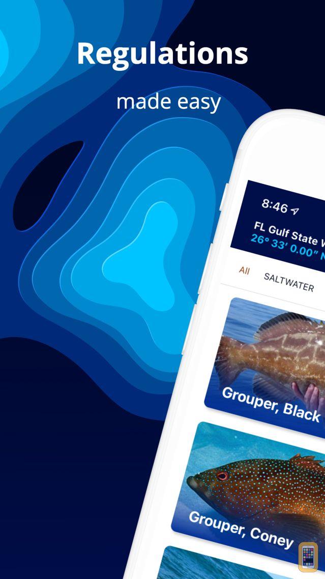 Screenshot - Fish Rules