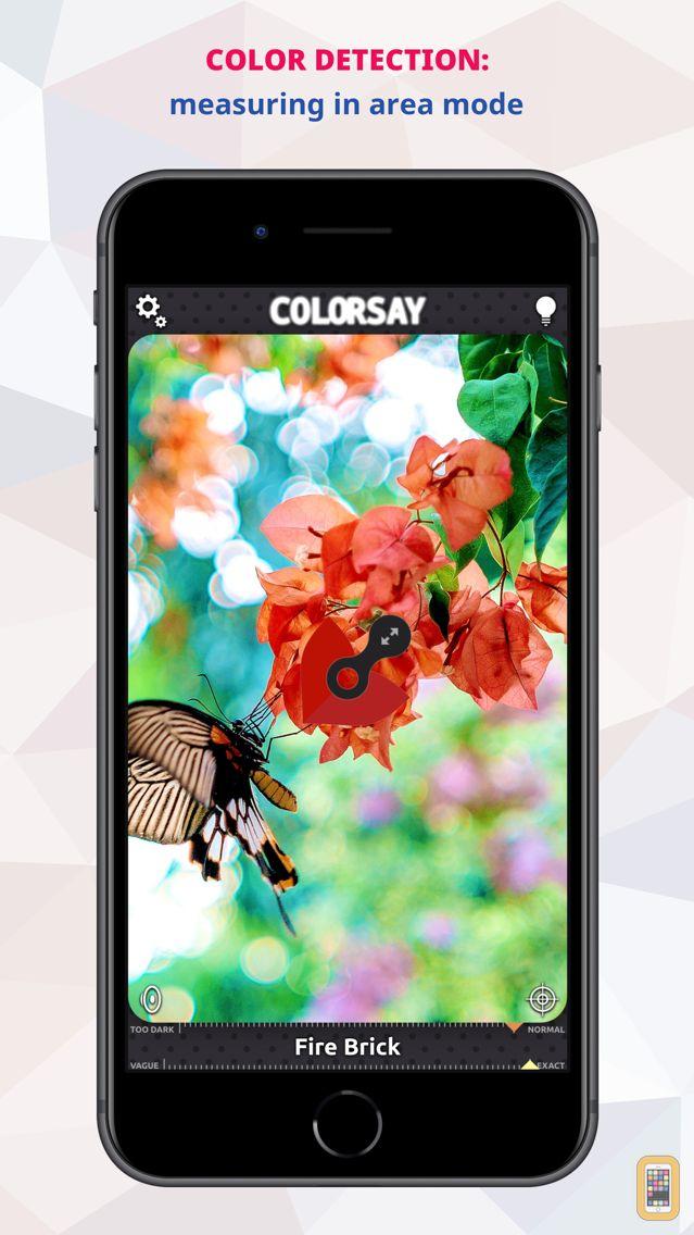 Screenshot - ColorSay