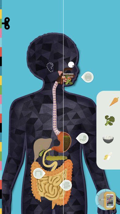 Screenshot - The Human Body by Tinybop