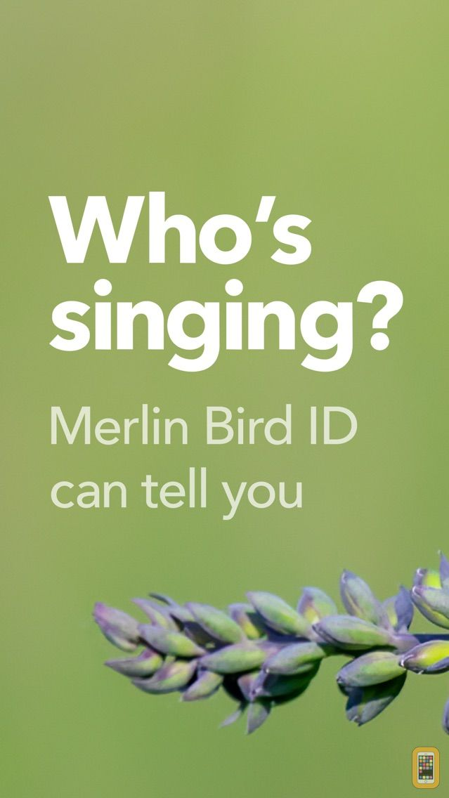 Screenshot - Merlin Bird ID by Cornell Lab