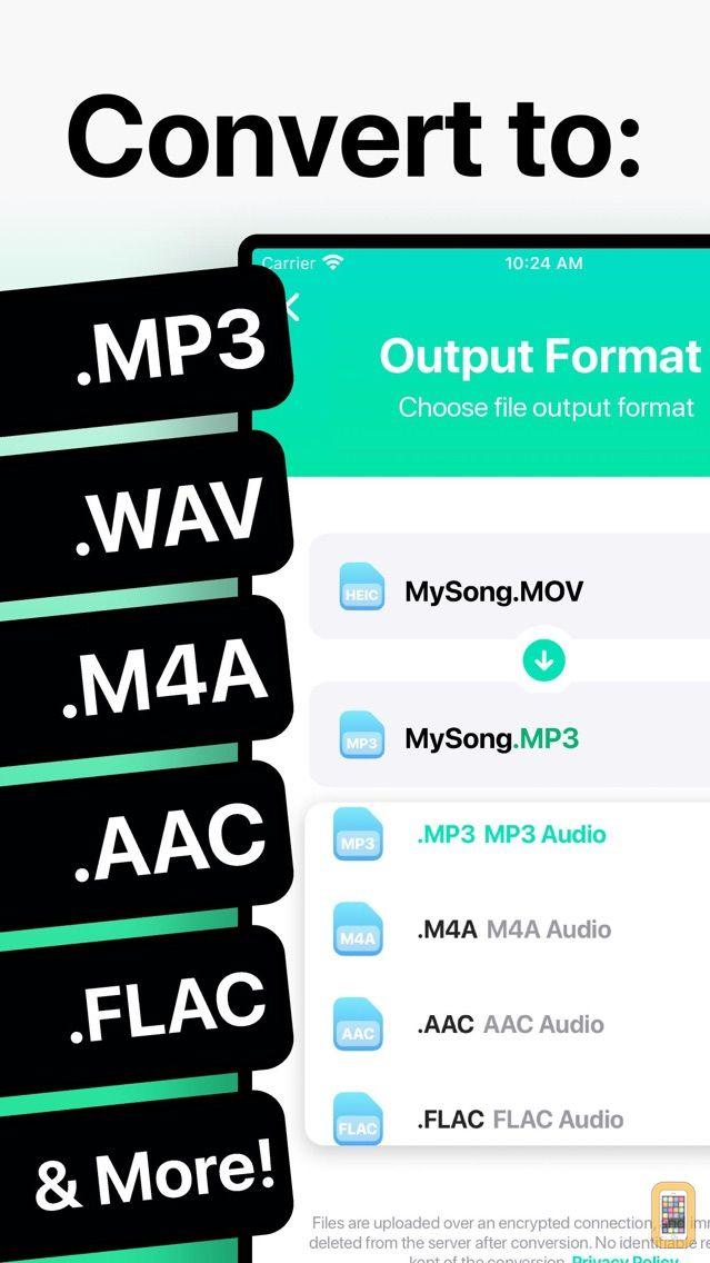 Screenshot - The Audio Converter