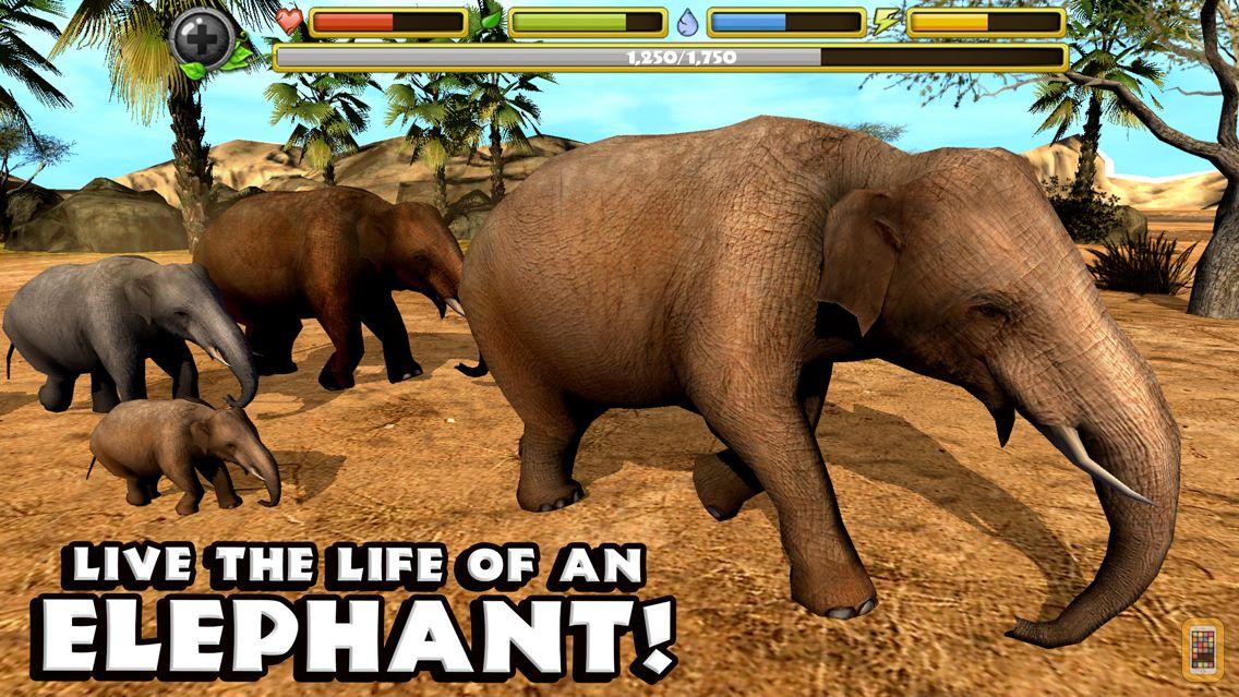 Screenshot - Elephant Simulator