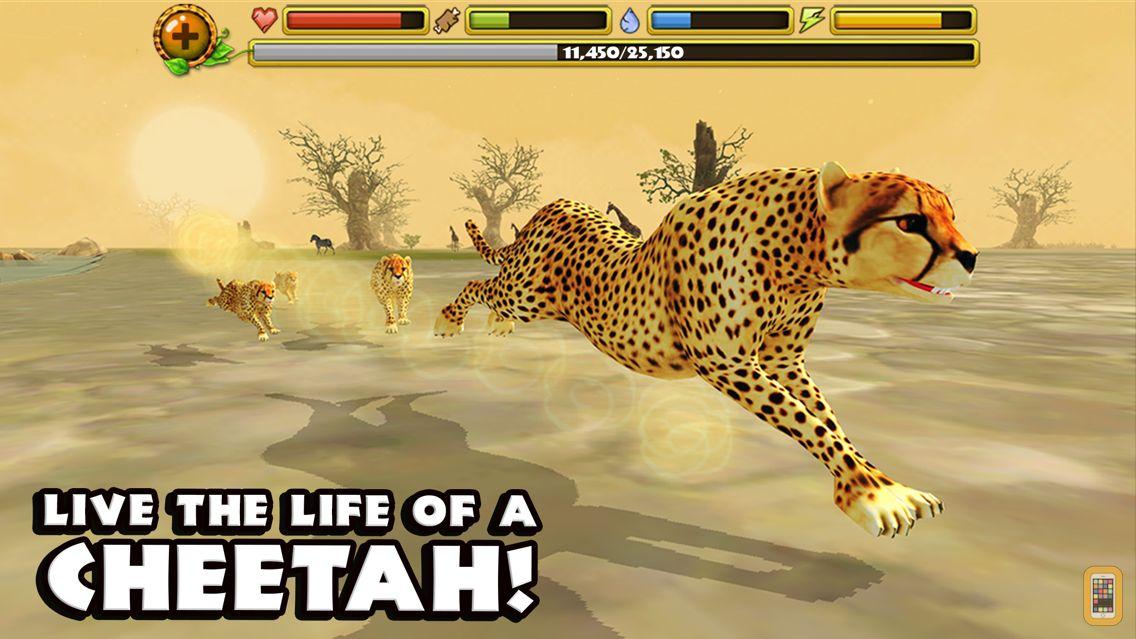 Screenshot - Cheetah Simulator