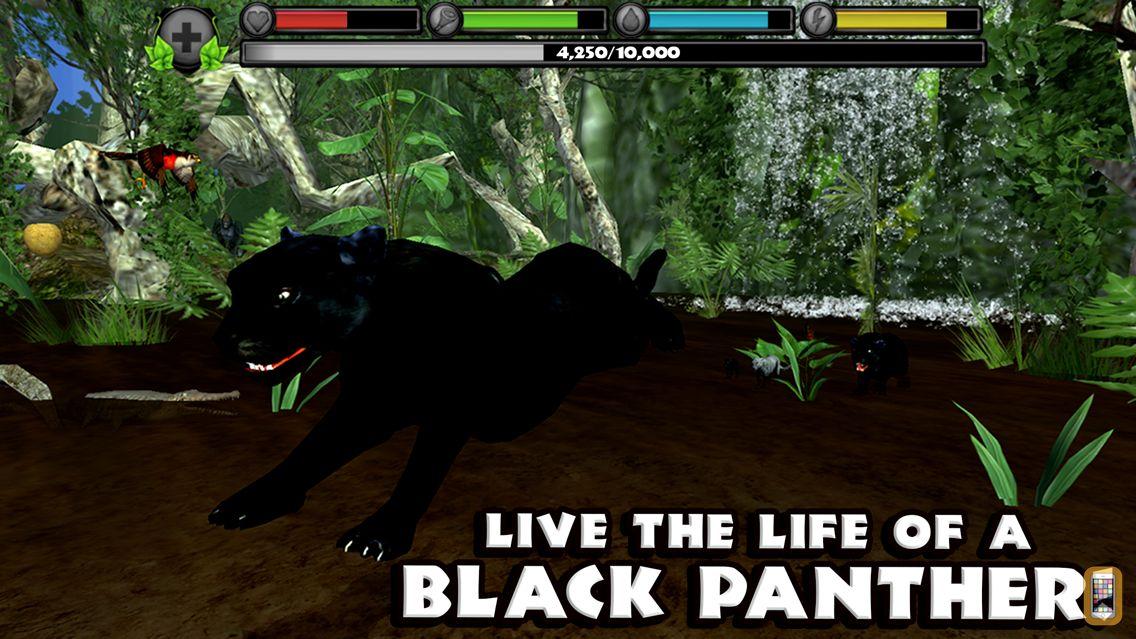 Screenshot - Panther Simulator