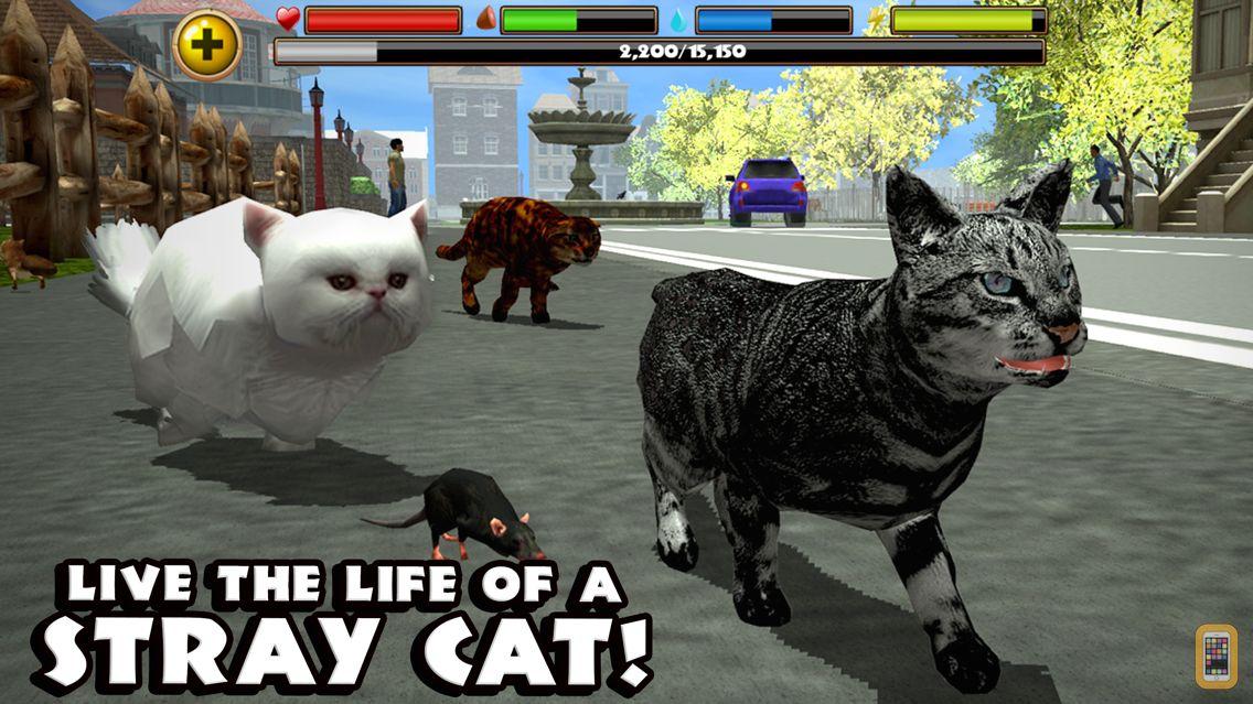 Screenshot - Stray Cat Simulator